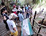 社顶解说员为游客导览石灰窑,石灰窑以珊瑚礁石为烧制材料,是社顶早年不可或缺的重要产业。(社顶部落提供)