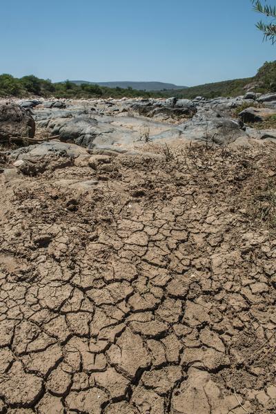 南非遭逢本世纪最严重旱灾,农民和其他灾民向政府提出诉愿,请政府调动军队因应人道危机、向海外求援以及发放水和粮食。图为已经干涸的Mfolozi河。(MUJAHID SAFODIEN/AFP)