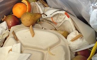 水果吃都沒吃就直接扔進學校飯堂垃圾桶,垃圾桶裡的好好的新鮮水果觸目可見。(讀者提供)