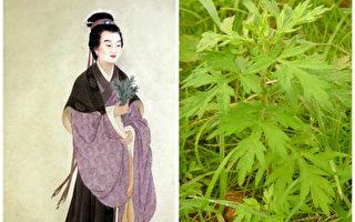 【文史】中国古代四大女医——晋代鲍姑