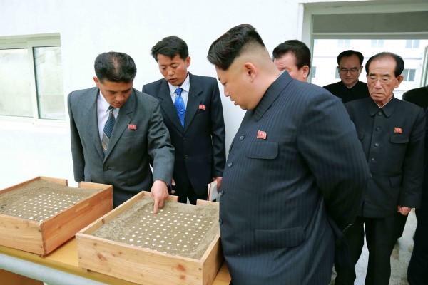 一项新的研究显示,金正恩的统治面临内部威胁,他个人面还临四种暗杀危险。( AFP PHOTO / KCNA)