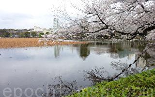 【文史】珍惜清明穀雨時 做一輩子最美的事