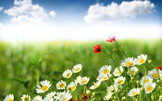 如何预防和治疗夏季疾病?
