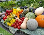 养生重协调平衡的膳食。(林怡/大纪元)