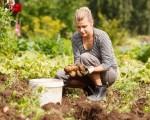 这五种厨余  正好留给花园当堆肥