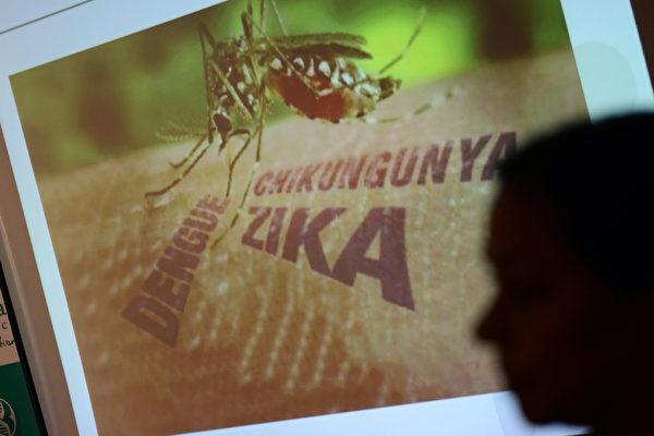联邦拨款对抗寨卡病毒的资金短缺