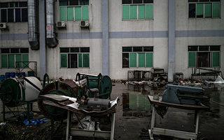 贸易战升级 在华日企六成已经或正在撤离