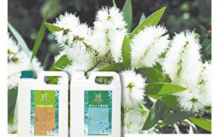 茶树精油纯露、绿花白千层纯露。(刘掍山提供)