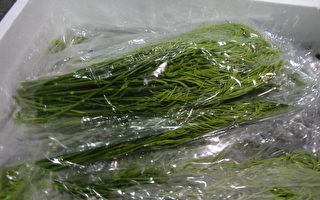 食药署4日公布食品边境通关查验结果,8项违规产品中,泰国蔬菜占3项,图为泰国沙翁。(卫福部食药署提供)