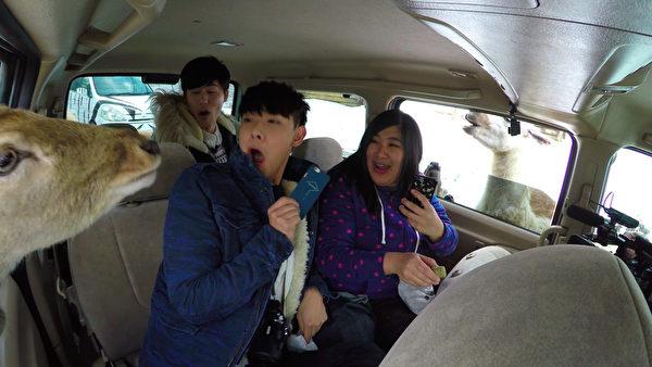 台男团SpeXial新接外景节目,造访日本福岛。(飞隆星提供)
