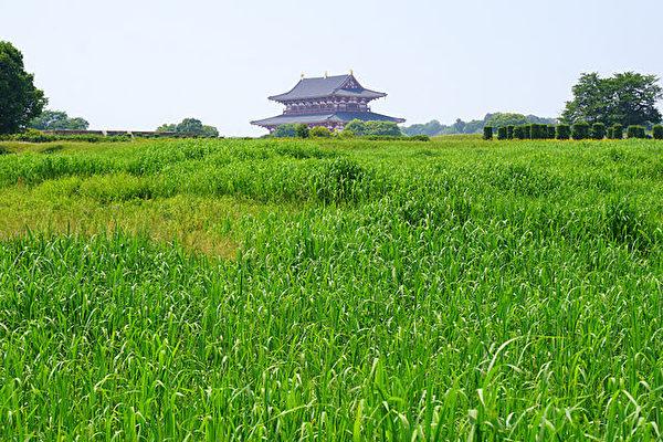 日本營建奈良時代的都城——平城京。平城京舊址(公有領域)