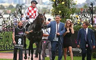 骑师巴斯特于3月12日在墨尔本举办的澳洲杯(Australian Cup)上赢得第七场赛事。(Scott Barbour/Getty Images)