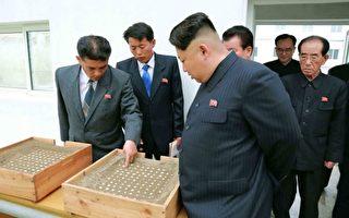 一份针对一名朝鲜高官的采访资料显示,面对国际社会的制裁,金正恩政权会受到极大的冲击。而许多知情的百姓们盼望通过这次制裁,金正恩政权能走向崩溃。(KCNA VIA KNS/AFP)