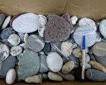 传闻三仙台、八仙洞石头有灵性,陆客团桃园机场将查获的上百颗石头送回三仙台海边。(东管处提供)