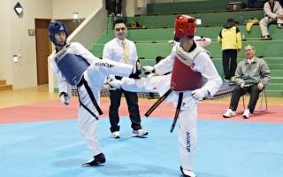 全国跆拳道锦标赛 400高手竞技