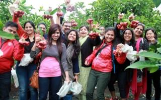 15名来自迪拜的旅行团团员,来到屏东佳冬莲雾园体验采果乐。(屏东县政府/提供)