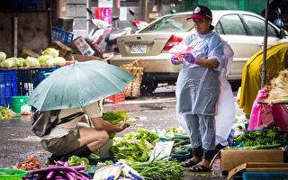 受天气等因素影响,菜价飙涨,29日菜价涨到每公斤约56元,创历史新高。(陈柏州/大纪元)