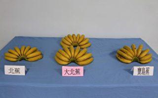 水果王國臺灣培育出高價新品種香蕉和蓮霧