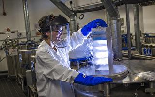 北医大透过药物本身的萤光特性,并改良现有侦测方式,可清楚看见药物如何进入肿瘤细胞,确认疗效。Getty Images)