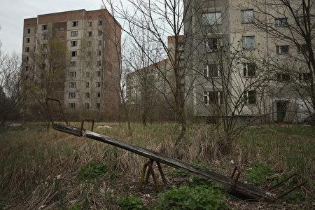大街上空荡荡的,到处都是被遗弃的建筑物,荆棘和野草蔓延,树木在街道上生长。 (Sean Gallup/Getty Images)
