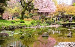 涵融中国文化的东京小石川后乐园,创园近四百年,是日本江户时代回游式庭园的代表。(容乃加/大纪元)