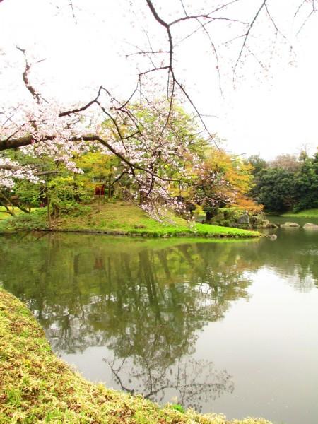 小石川后乐园的大泉水中心有蓬莱岛。