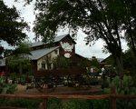 图:在Fredericksburg东郊,十足德州风情的Wild Seed Farms。﹝谢行昌提供﹞