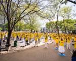 2016年5月12日,部分法轮功学员在纽约联合国总部附近的哈玛绍广场公园集体炼功。(戴兵/大纪元)