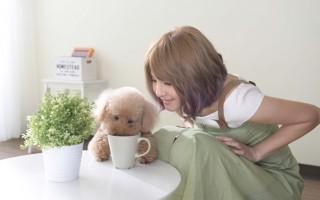 郭静新歌《拍档》成职场元气歌,唱片公司特地加拍MV,找来郭静爱犬入镜。(福茂提供)