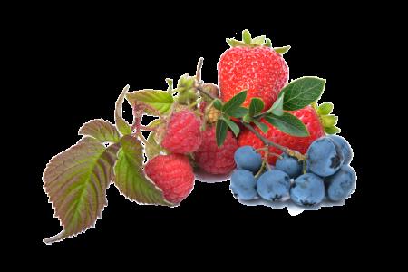 多食用高纤维食物有助于控制血糖。(pixabay)