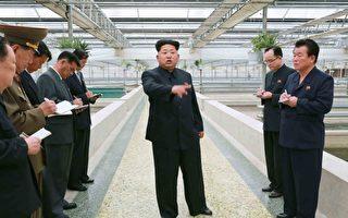 专家称,金正恩有一个以非法收入支撑的小金库。(AFP)
