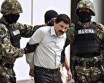 墨西哥毒販華金·古茲曼·洛埃拉,由海軍陸戰隊押護下於2014年2月22日在墨西哥城露面。(RONALDO SCHEMIDT/ AFP / Getty Images)