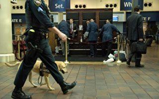 华盛顿DC的巡逻警犬。(BRENDAN SMIALOWSKI/AFP/Getty Images)