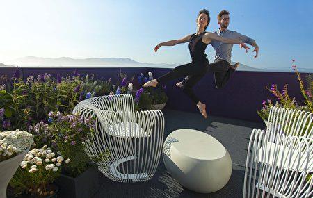 """""""2016年旧金山家居装饰展""""的其中一个展览中——阳台小花园。(景观设计师张志维提供)"""