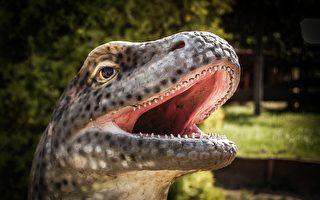 大众娱乐文化中的恐龙面部形象 (pixabay)