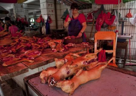 玉林一名屠夫正在斩切狗肉。(STR / AFP)