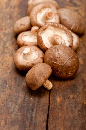 香菇(fotolia)