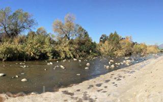 从国殇日(5月30日)开始,洛杉矶河将向公众开放两个河段,供人们钓鱼和划皮艇。图为洛杉矶河。(大纪元)