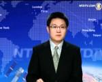 海外新唐人电视台时事评论员赵培。(网路图片)
