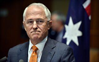 澳总理特恩布尔在自己选区人气直降 10%