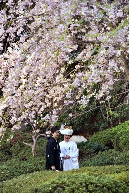 时值6月结婚季节,有不少来自大陆和港台地区的华人到日本结婚、拍摄婚纱照,提振了日本萎缩的婚庆市场。(YOSHIKAZU TSUNO/AFP/Getty Images)