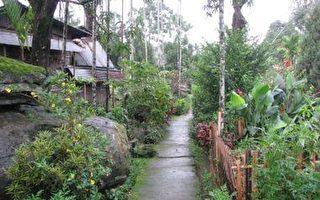 位於印度印度东北部的梅加拉亚邦(Mawlynnong)的「莫里農」(Mawlynnong)是全亞洲最乾淨的村莊。(維基百科公有領域)