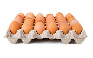 美食品价格大跌 一打鸡蛋卖价跌破1美元