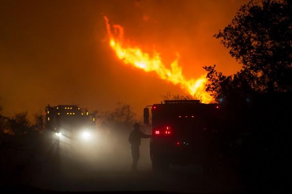 加州圣巴巴拉森林区大火已烧掉大约7060英亩土地。强风和极度高温天气给消防员灭火带去困难。 (DAVID MCNEW/AFP/Getty Images)
