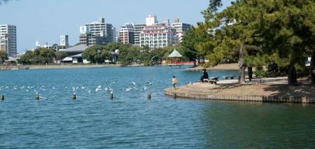 日本福岡大濠公園。(梁超人 / 大紀元)