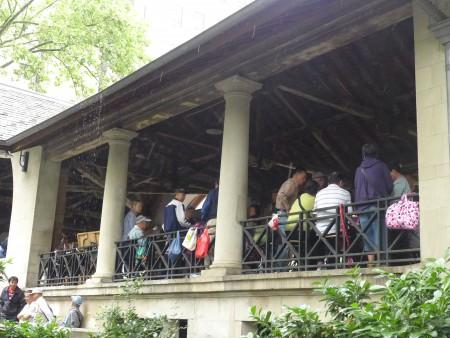 下雨了,老人们转战到哥伦布公园的凉亭里,继续打牌。