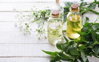 选用含薄荷、尤加利、丁香、鼠尾草、迷迭香等精油的沁凉沐浴用品,可迅速为肌肤降温,舒缓夏日烦热感。(Fotolia)