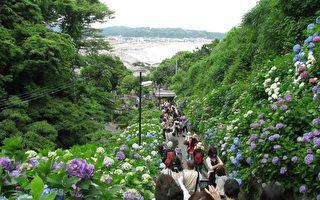 日本梅雨季最美景点大盘点(一)