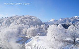 亚洲十大最佳旅游景点 北海道四季美景夺冠
