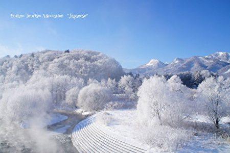 """日本北海道富良野市去年12月23日清晨气温摄氏零下21.5度,形成一片银白世界,有些地方出现如梦如幻的""""钻石尘""""和""""雾冰""""美景。(富良野观光协会提供)"""